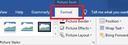 DeftPDF Format Picture in Word