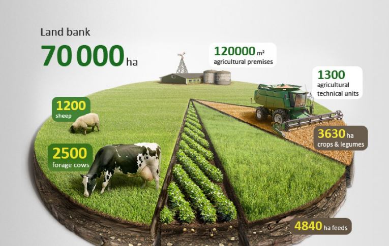 sample infogrpahic for an agriculture company