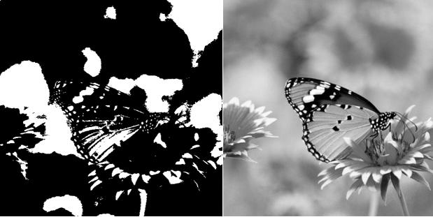 DeftPDF를 참조하십시오를 참조하십시오 black and white versus grayscale